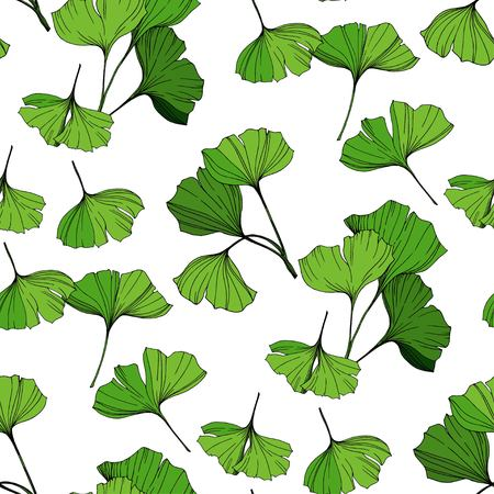 Vector Green ginkgo leaf. Plant botanical garden floral foliage. Engraved ink art. Seamless background pattern. Fabric wallpaper print texture.