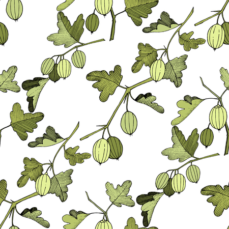 Vector Gooseberry black and white engraved ink art. Seamless background pattern. Fabric wallpaper print texture. Green leaf. Leaf plant botanical garden floral foliage. Ilustracja