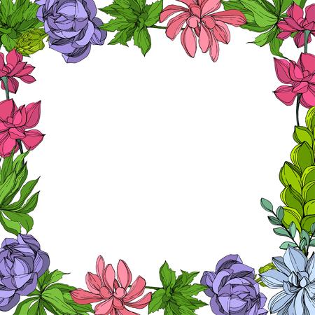 Fleur succulente botanique de la jungle de vecteur. Feuille de printemps sauvage isolée. Illustration d'art à l'encre gravée. Carré d'ornement de bordure de cadre. Vecteurs
