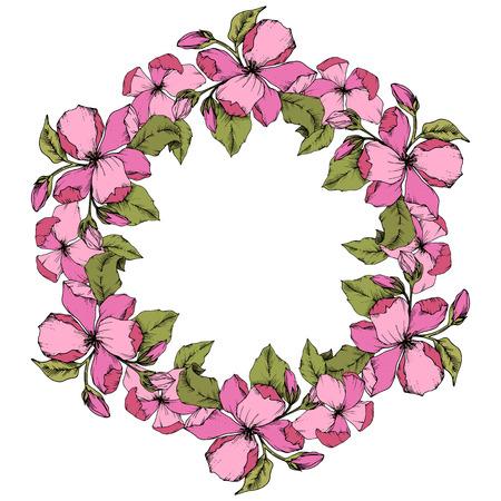 Vector Pink Apple blossom floral botanical flower. Wild spring leaf isolated. Engraved ink art. Frame border ornament square on white background. Stock Illustratie