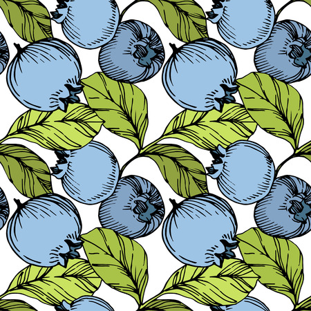 Vector Blueberry green and blue engraved ink art. Berries and green leaves. Leaf plant botanical garden floral foliage. Seamless background pattern. Fabric wallpaper print texture. Ilustração