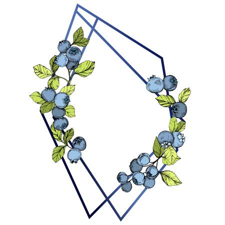 Vector Blueberry blue and green engraved ink art. Berries and green leaves. Leaf plant botanical garden floral foliage. Frame border crystal ornament square. Ilustração