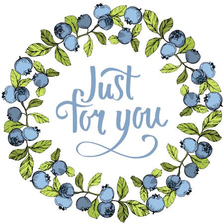 Vector Blueberry blue and green engraved ink art. Berries and green leaves. Leaf plant botanical garden floral foliage. Frame border ornament square. Ilustração