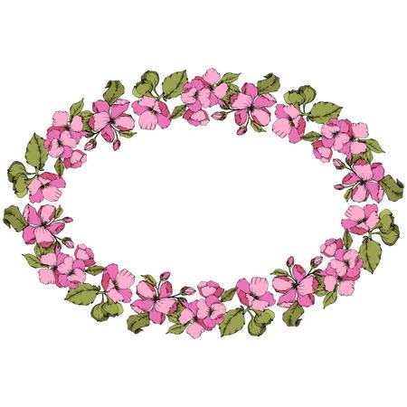 Vector Pink Apple blossom floral botanical flower. Wild spring leaf isolated. Engraved ink art. Frame border ornament square on white background.  イラスト・ベクター素材