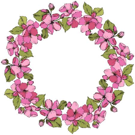 Vector Pink Apple blossom floral botanical flower. Wild spring leaf isolated. Engraved ink art. Frame border ornament square on white background. Illustration