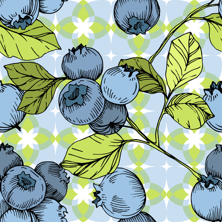 Vector Blueberry green and blue engraved ink art. Berries and green leaves. Leaf plant botanical garden floral foliage. Seamless background pattern. Fabric wallpaper print texture. Ilustracja