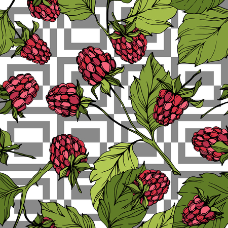 Vector Raspberry healthy food isolated. Red and green engraved ink art. Seamless background pattern. Fabric wallpaper print texture.