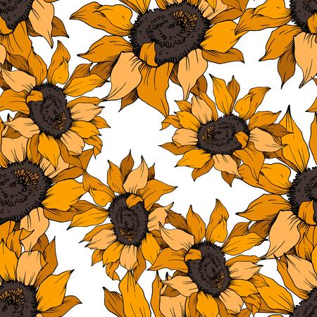 Fleur botanique florale de tournesol de vecteur. Fleur sauvage de feuille de printemps sauvage isolée. Art d'encre gravée orange et brune. Motif de fond sans couture. Texture d'impression de papier peint en tissu.