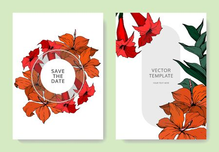 Vector Tropical flowers and leaves. Black and white engraved ink art. Wedding background card decorative border.