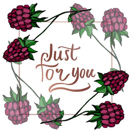 Vector Raspberry healthy food fresh berry isolated. Black and white engraved ink art. Frame border ornament square on white background.