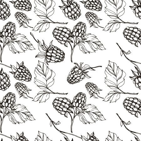 Vector Raspberry healthy food isolated. Black and white engraved ink art. Seamless background pattern. Zdjęcie Seryjne - 129267838