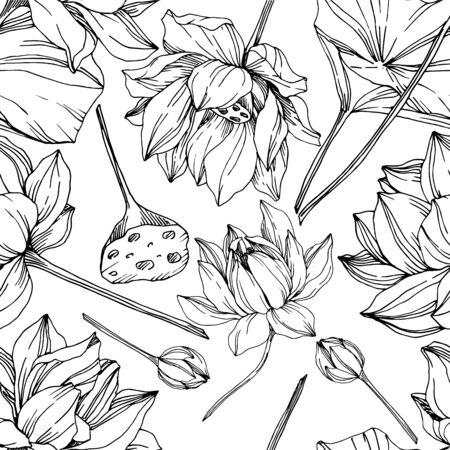 Vector Lotus floral botanical flowers. Black and white engraved ink art. Seamless background pattern.