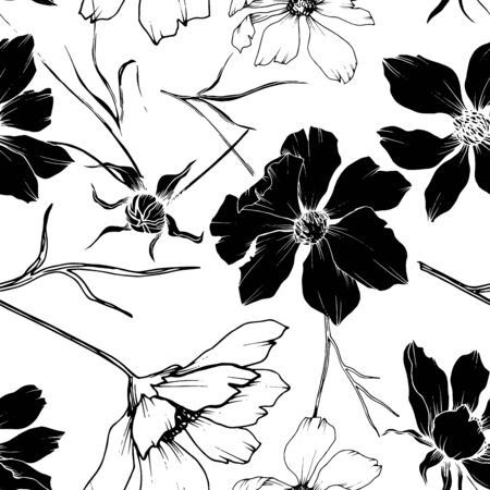 Vector Cosmos floral botanical flowers. Wild spring leaf wildflower isolated. Black and white engraved ink art. Seamless background pattern. Fabric wallpaper print texture.