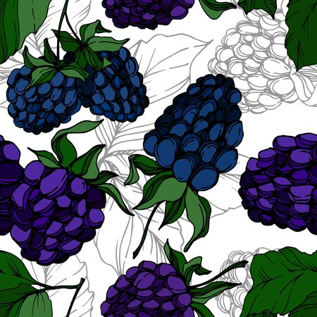 Vector Blackberry healthy food. Black and white engraved ink art. Seamless background pattern.