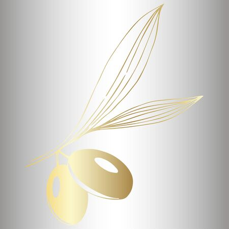 Vector Golden olive branch. Plant botanical foliage. Golden engraved ink art. Isolated olive illustration element. Vector Illustration