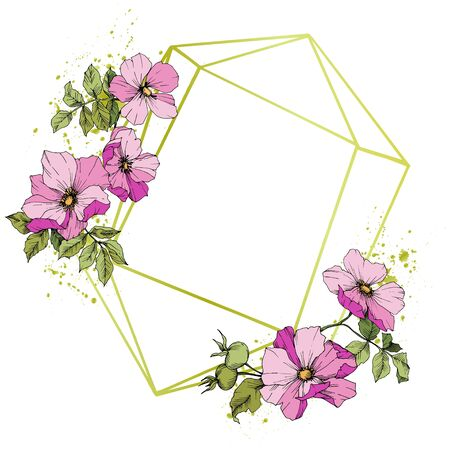 Wildflower rosa canina in a vector style isolated. Pink engraved ink art. 向量圖像