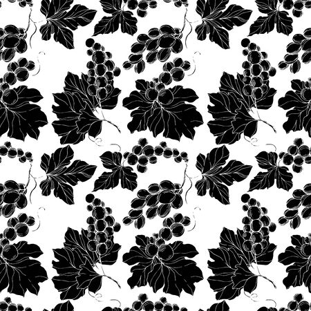 Vector Grape berry healthy food. Black and white engraved ink art. Seamless background pattern.