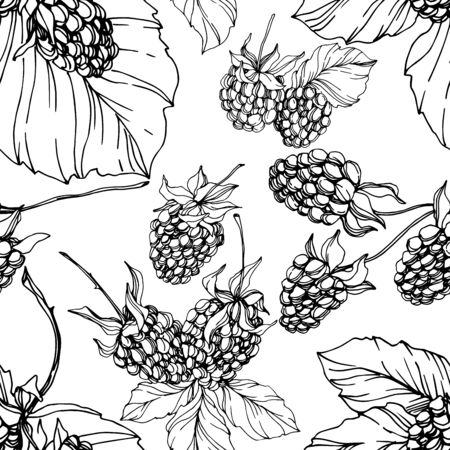 Blackberry healthy food. Black and white engraved ink art. Seamless background pattern. Fabric wallpaper print texture.