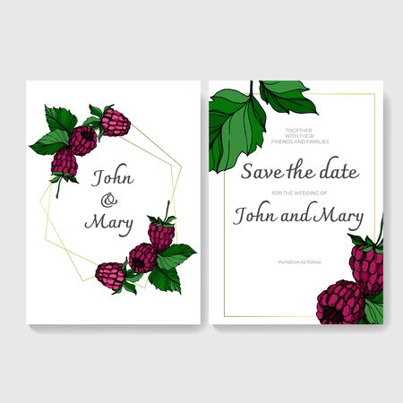 Vector Raspberry healthy food isolated. Black and white engraved ink art. Wedding background card decorative border. Stock fotó - 134269104