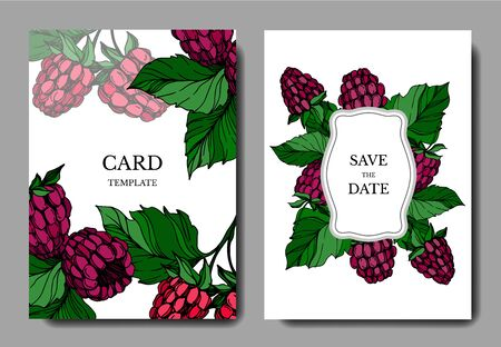 Vector Raspberry healthy food isolated. Black and white engraved ink art. Wedding background card decorative border. Stock fotó - 134269103