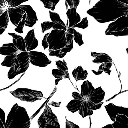 Vector Magnolia floral botanical flowers. Black and white engraved ink art. Seamless background pattern. Stock fotó - 134269147