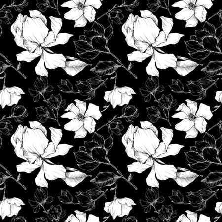 Vector Magnolia floral botanical flowers. Black and white engraved ink art. Seamless background pattern. Illusztráció
