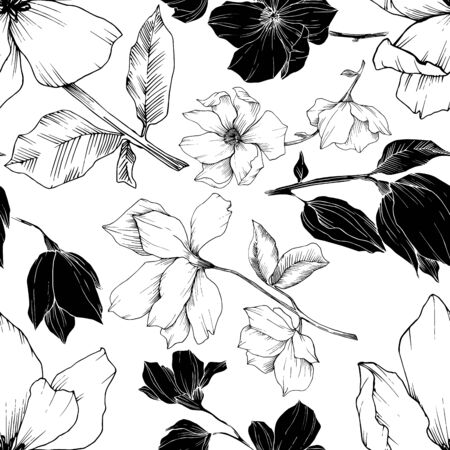 Vector Magnolia floral botanical flowers. Black and white engraved ink art. Seamless background pattern. Stock fotó - 134269159