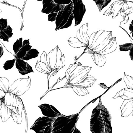 Vector Magnolia floral botanical flowers. Black and white engraved ink art. Seamless background pattern. Stock fotó - 134269162