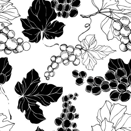 Vector Grape berry healthy food. Black and white engraved ink art. Seamless background pattern. Vector Illustratie