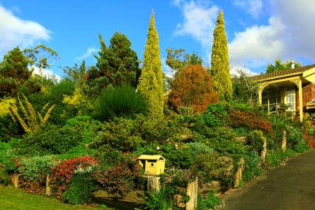frontyard: perfect frontyard
