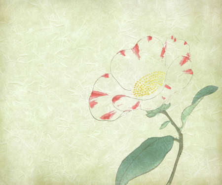 delicate water paint of flower on rice paper photo