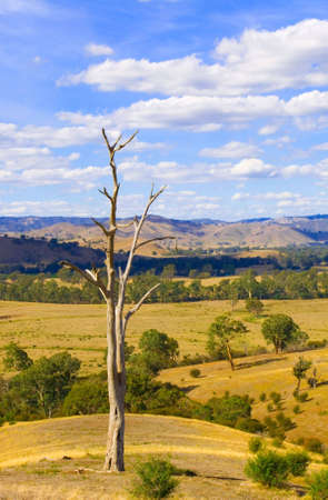 rural Australia - landscape photo