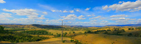 australia farm: country landscape panorama Stock Photo