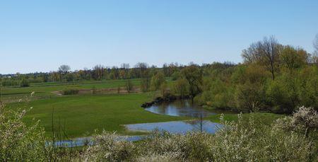 River Wieprz, Zawieprzyce, Poland photo