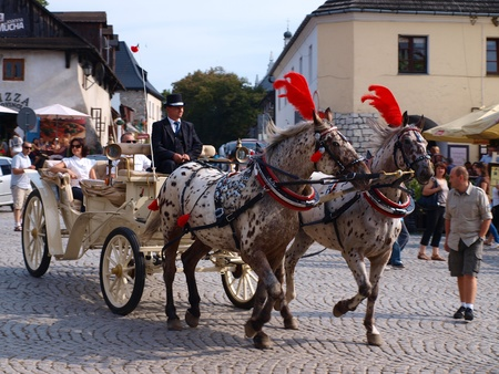 2011-09-18: A light carriage waiting to take tourists on the tour around Kazimierz Dolny upon Vistula River, Kazimierz Dolny, Poland