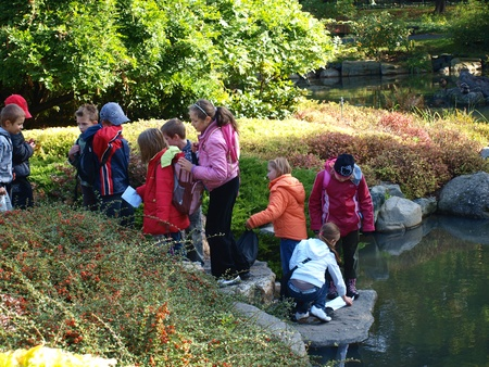 A school trip in the Japanese garden in Wroclaw, Poland