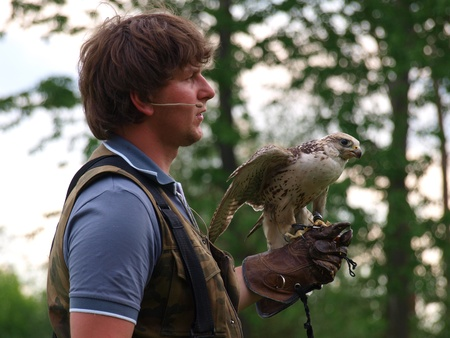 reconstruct: Falconer with the bird at the historical reenactment show, Zawieprzyce, Poland, May 6th 2012.