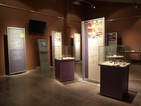 flint: Modern exhibition at the neolithic mine of striped flint, Archeological-Natural Reserve Krzemionki, Krzemionki, Poland