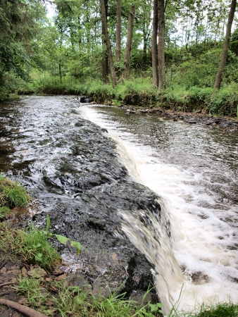 Tanew river with small waterfalls, Susiec, Poland photo
