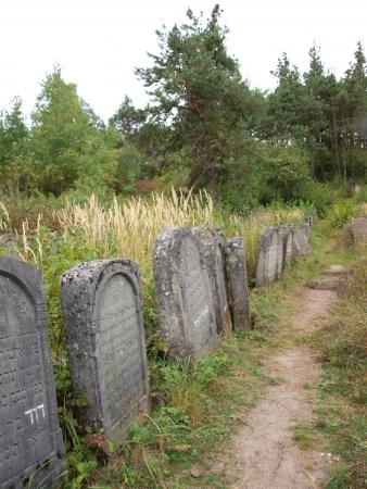 Old Jewish cemetery, Jozefow, Poland Stock Photo - 15347474
