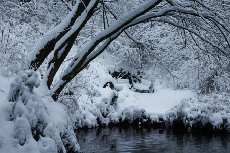 winter pond with bench
