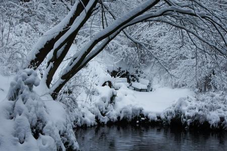 Winter Teich mit Bank