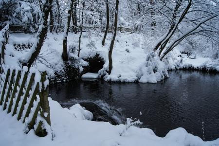 Winter Teich