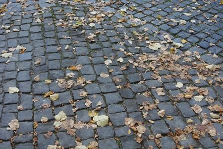 Cobblestone stadt stra�e brick alten Stein Stra�e Bl�tter Herbst