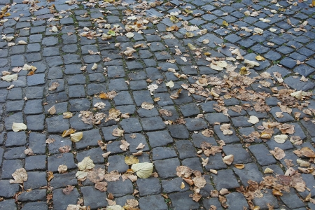 Cobblestone street town brick old stone road leaves autumn Stock Photo