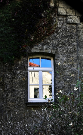 old overgrown window in autumn with reflection