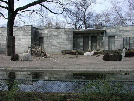 Zoo Berlin on March 30, 2002