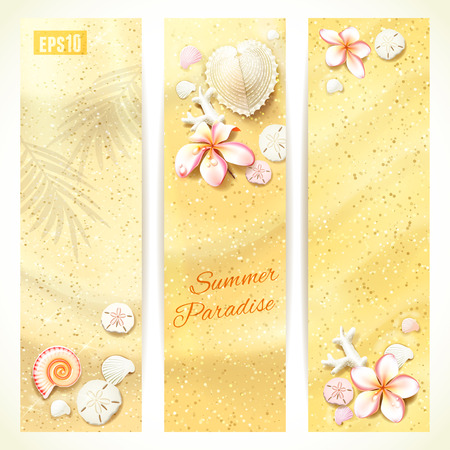sand dollar: Set of Vertical Banners with Sand and Seashells. Vector illustration, eps10, editable.