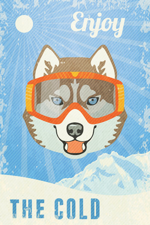 husky: Winter Poster with Husky with goggles. Vector illustration.
