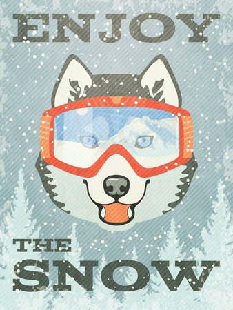 alaskan malamute: Winter Poster with Husky with goggles. Vector illustration.